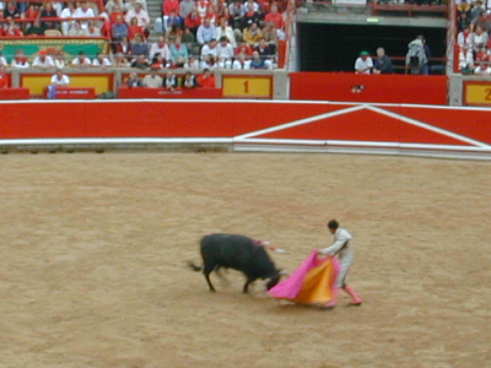 108 Bullfight 3